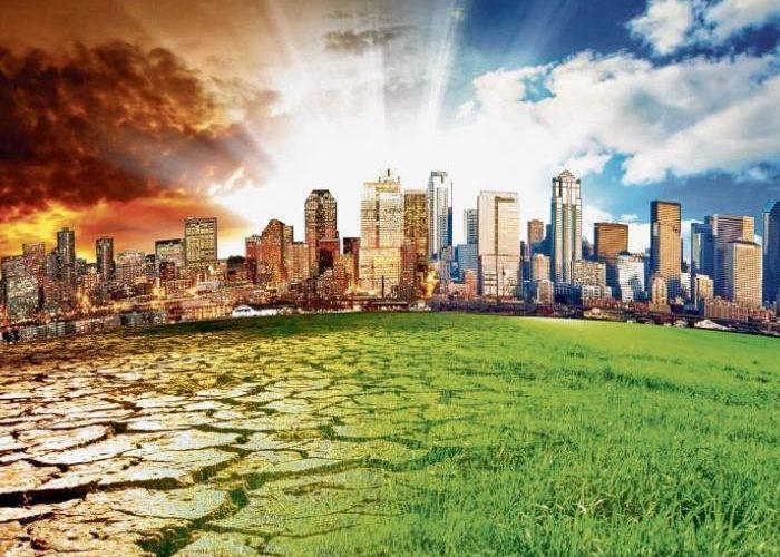 Dia Internacional del Cambio Climático.