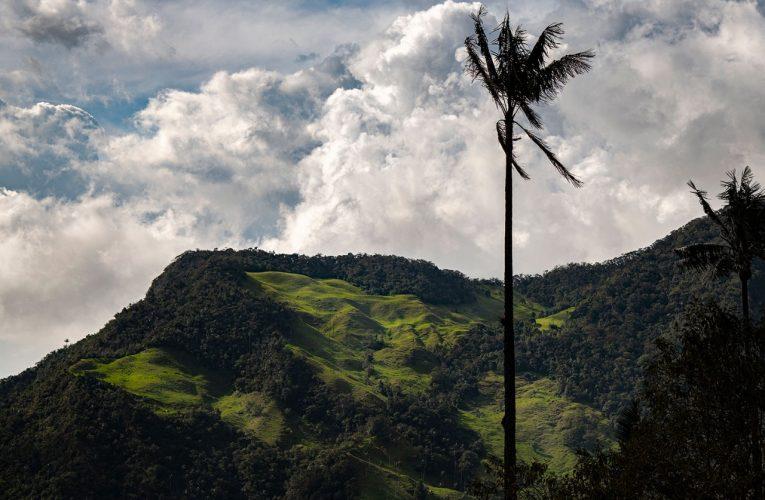 «Hay que celebrar Semana Santa en armonía con la naturaleza» CAR